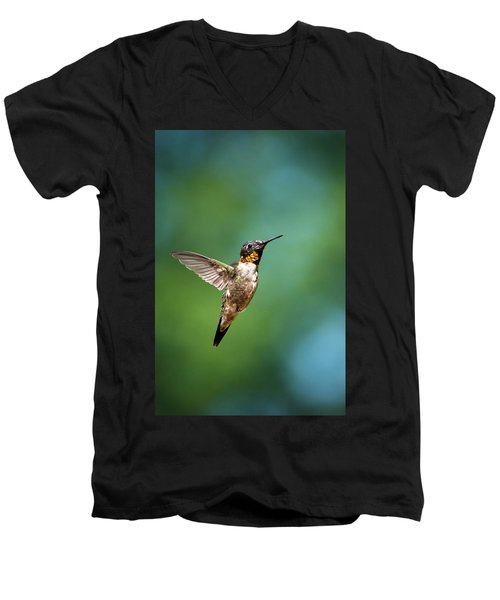 Flying Hummingbird Men's V-Neck T-Shirt