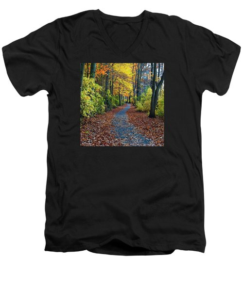 Follow The Path Men's V-Neck T-Shirt by Mikki Cucuzzo