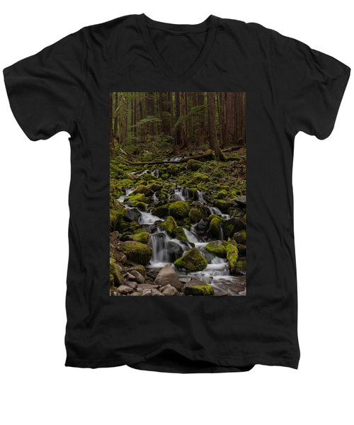 Forest Cathederal Men's V-Neck T-Shirt by Mike Reid