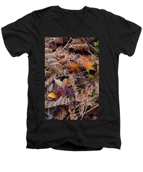 Forest Ferns Men's V-Neck T-Shirt