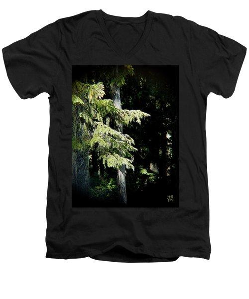 Forest Sunlight - 1 Men's V-Neck T-Shirt