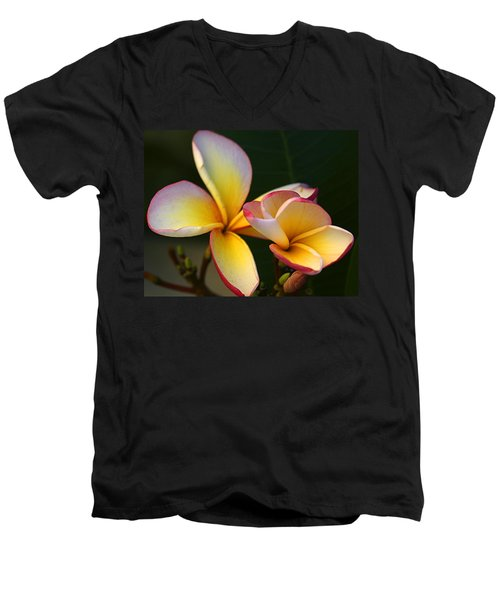 Frangipani Flowers Men's V-Neck T-Shirt by Ralph A  Ledergerber-Photography