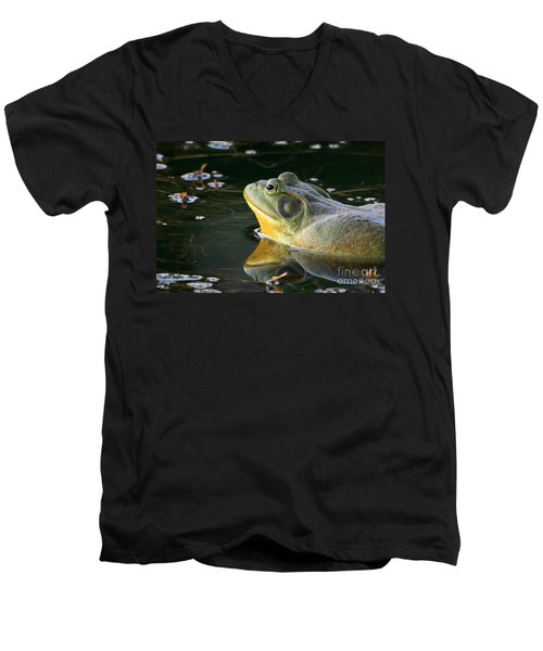 Men's V-Neck T-Shirt featuring the photograph Frog At Sunset by Paula Guttilla