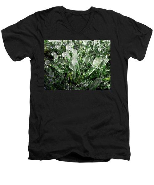 Frosted Grass Men's V-Neck T-Shirt