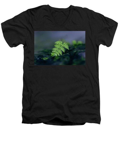 Frozen Fern II Men's V-Neck T-Shirt