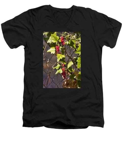 Men's V-Neck T-Shirt featuring the photograph Fruits Of Autumn by Joan Bertucci