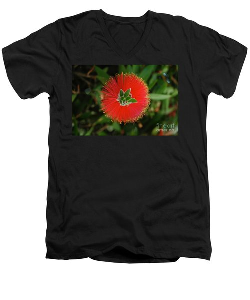 Fuzzy Flower Men's V-Neck T-Shirt