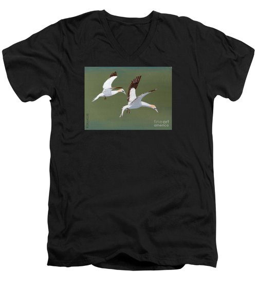 Gannets - Painting Men's V-Neck T-Shirt by Veronica Rickard