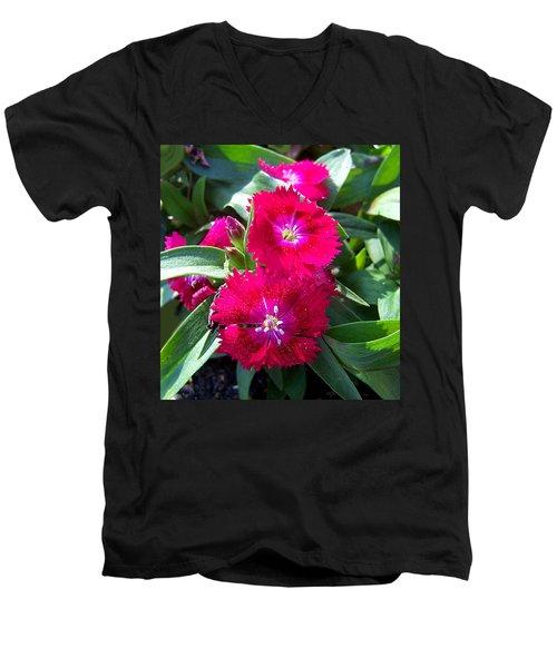Men's V-Neck T-Shirt featuring the photograph Garden Delight by Sandi OReilly
