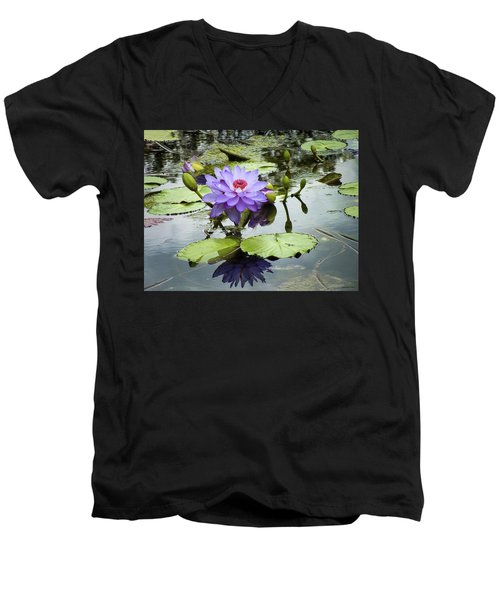 Garden Reflaections Men's V-Neck T-Shirt