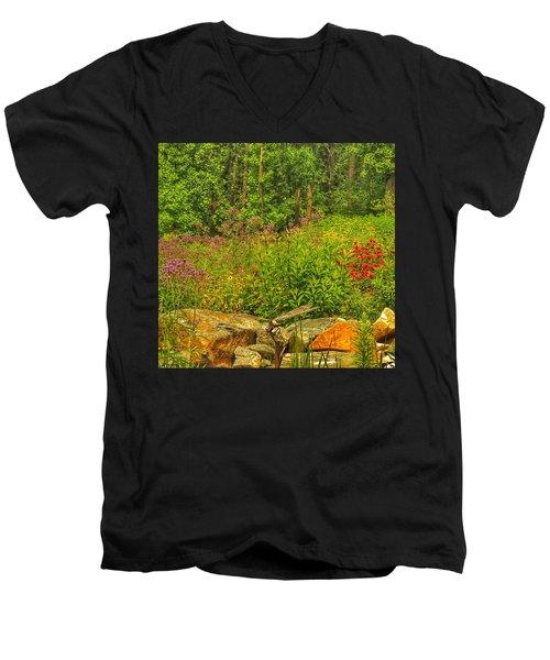 Garden Rocks Men's V-Neck T-Shirt