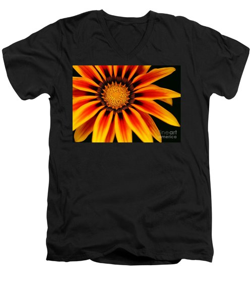 Gazania L Men's V-Neck T-Shirt