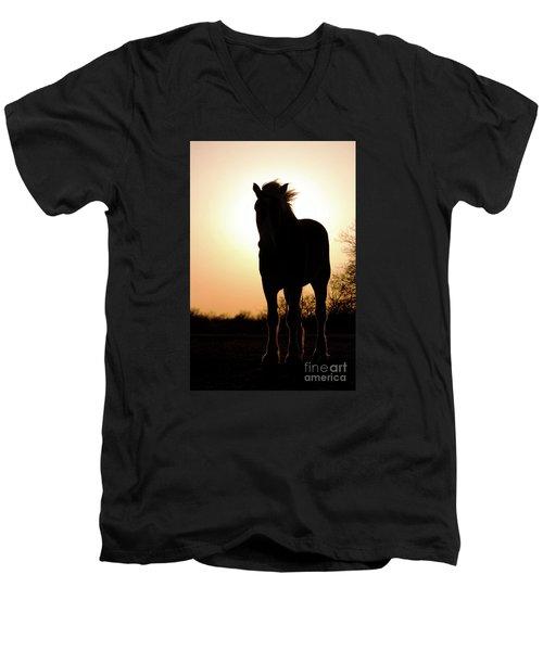 Gentlest Giant Men's V-Neck T-Shirt
