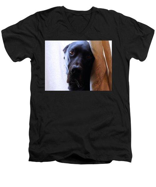 Gentle Giant Men's V-Neck T-Shirt