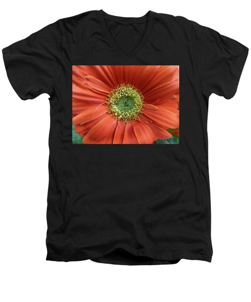 Gerber Daisy Men's V-Neck T-Shirt by Geraldine Alexander