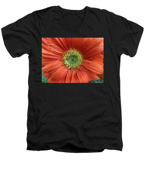 Gerber Daisy Men's V-Neck T-Shirt