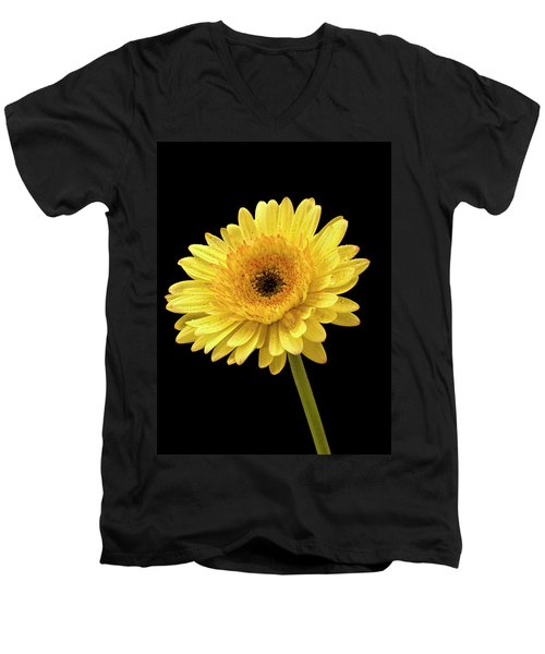 Gerbera Portrait Men's V-Neck T-Shirt
