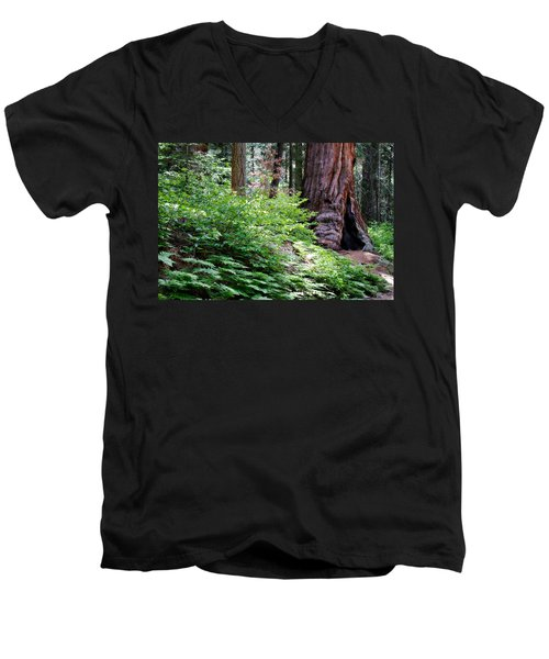 Giant Among The Forest Men's V-Neck T-Shirt by Lana Trussell
