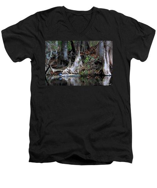 Giant Cypress Knees Men's V-Neck T-Shirt