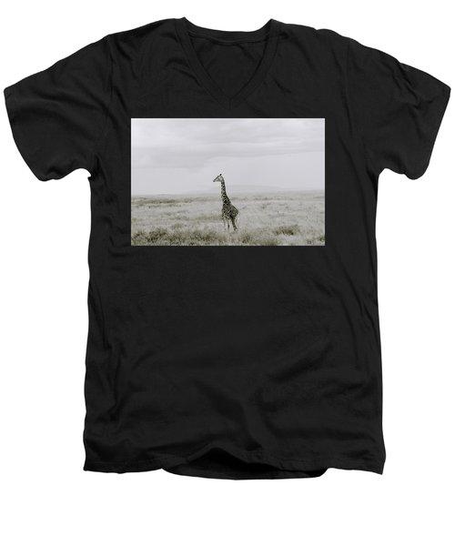 Giraffe Men's V-Neck T-Shirt by Shaun Higson