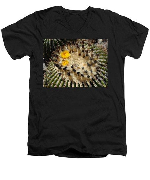 Giving Birth Barrel Cactus Yellow Flowers Men's V-Neck T-Shirt
