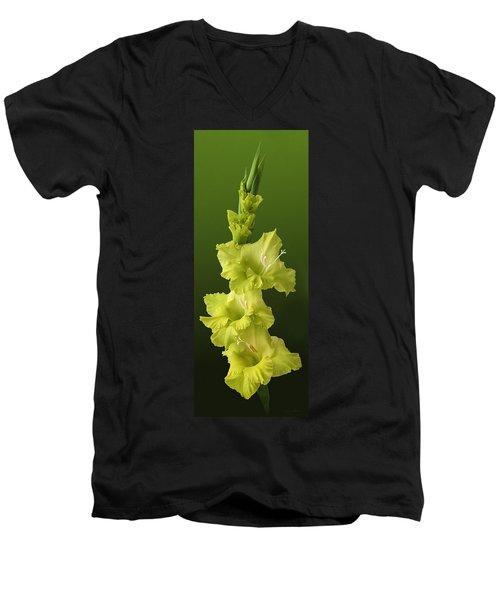 Glads Men's V-Neck T-Shirt