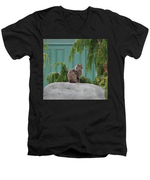 Glorious Cat Men's V-Neck T-Shirt