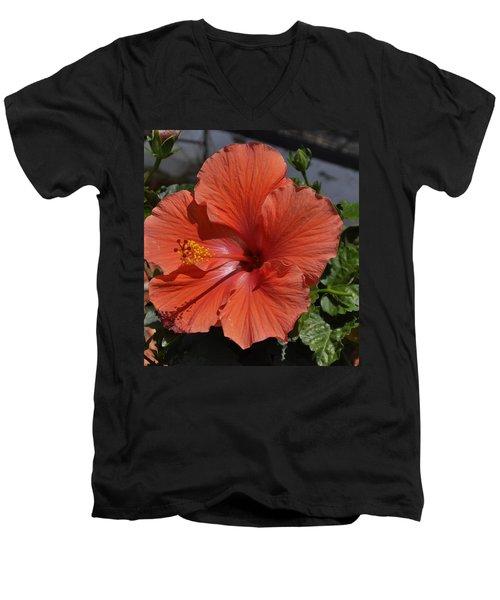 Glorious Hibiscus Men's V-Neck T-Shirt