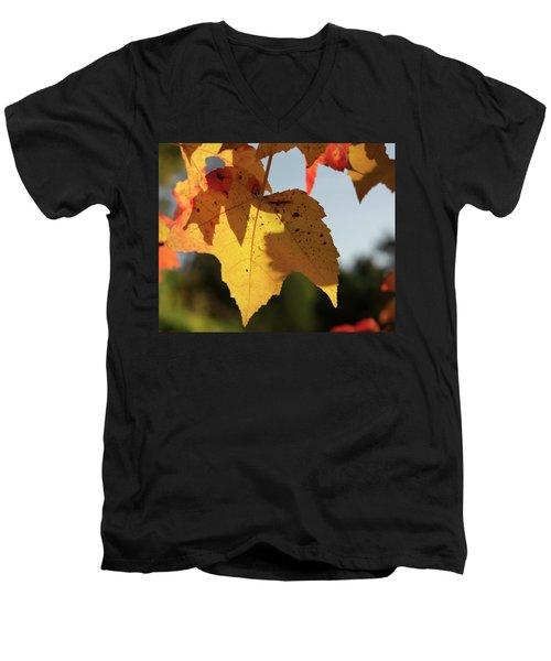 Glowing Leaves Men's V-Neck T-Shirt