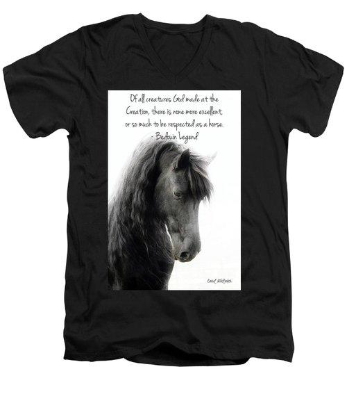 God's Creation Men's V-Neck T-Shirt
