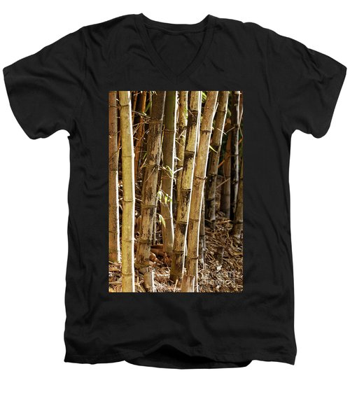 Men's V-Neck T-Shirt featuring the photograph Golden Canes by Linda Lees