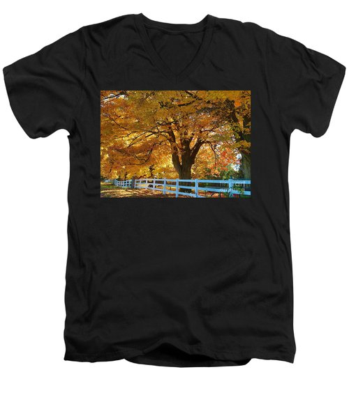 Men's V-Neck T-Shirt featuring the photograph Golden Curtain by Robert Pearson