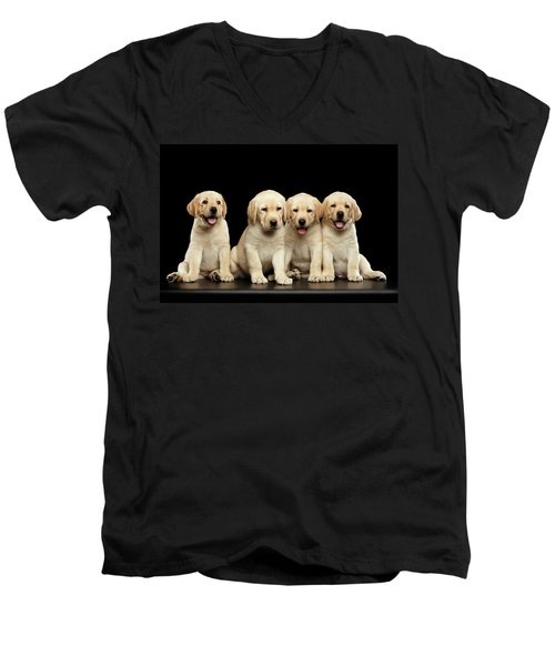 Golden Labrador Retriever Puppies Isolated On Black Background Men's V-Neck T-Shirt