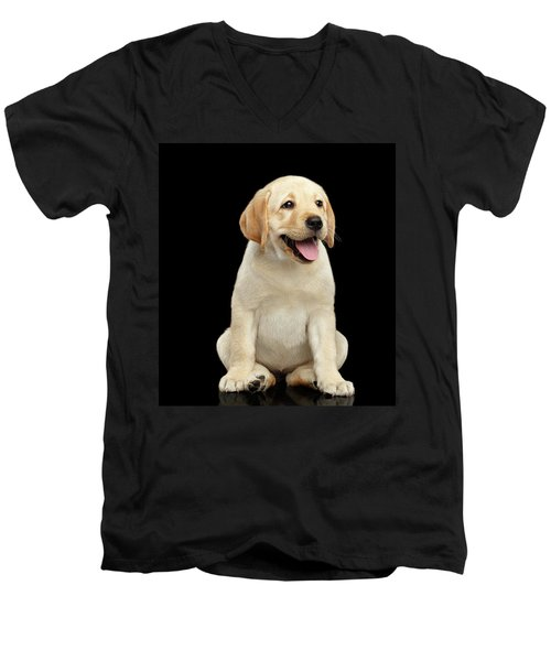 Men's V-Neck T-Shirt featuring the photograph Golden Labrador Retriever Puppy Isolated On Black Background by Sergey Taran