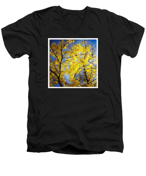 Golden October Tree In Fall Men's V-Neck T-Shirt