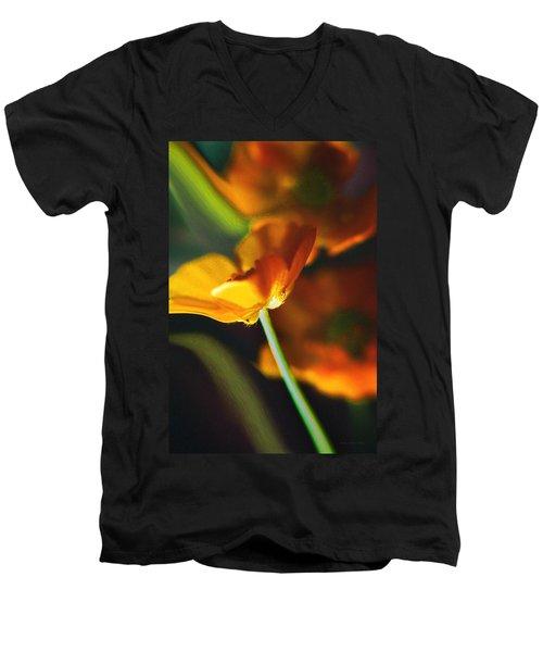 Golden Possibilities... Men's V-Neck T-Shirt