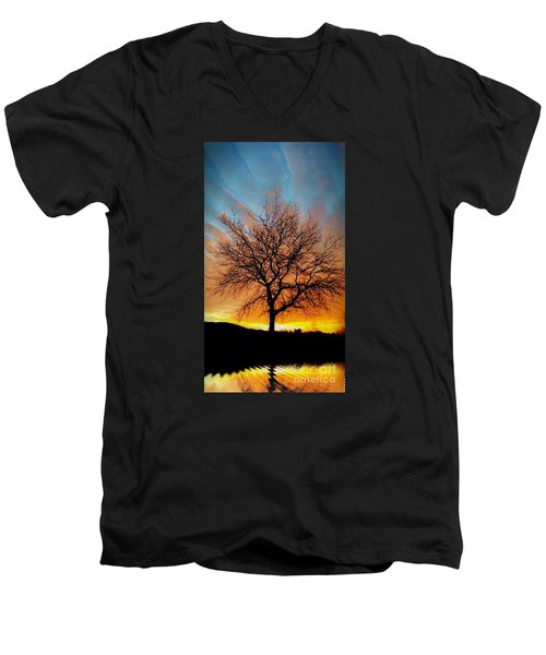 Golden Reflection Men's V-Neck T-Shirt by Dan Stone