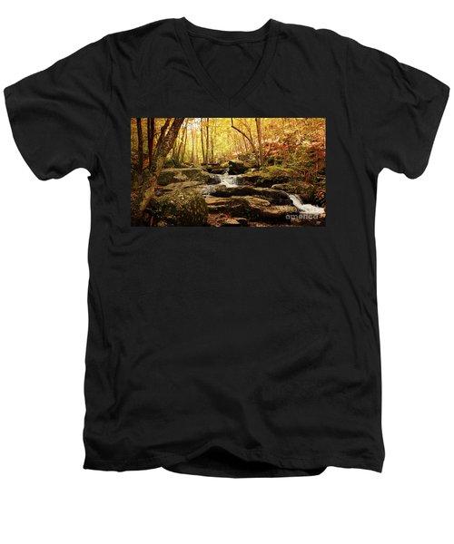 Golden Serenity Men's V-Neck T-Shirt by Rebecca Davis
