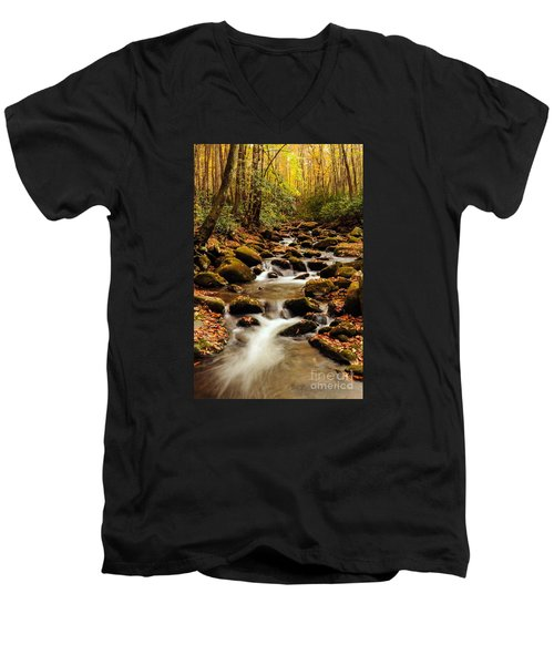 Men's V-Neck T-Shirt featuring the photograph Golden Stream In The Great Smoky Mountains by Debbie Green