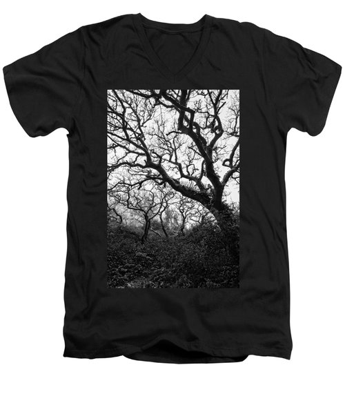 Gothic Woods II Men's V-Neck T-Shirt