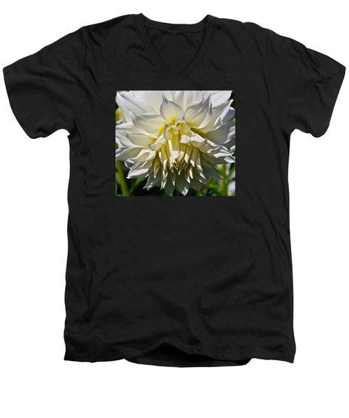 Graceful Dahlia  Men's V-Neck T-Shirt