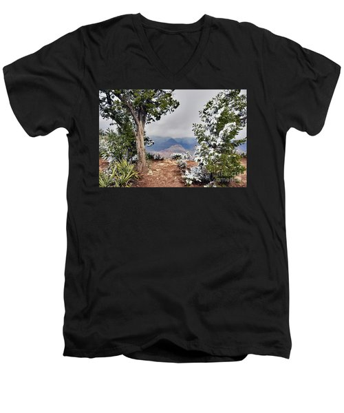Grand Canyon Through The Trees Men's V-Neck T-Shirt by Debby Pueschel