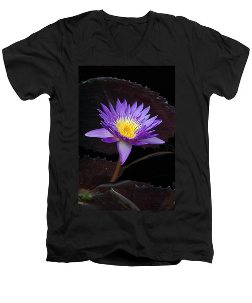 Men's V-Neck T-Shirt featuring the photograph Grand Entrance by Byron Varvarigos