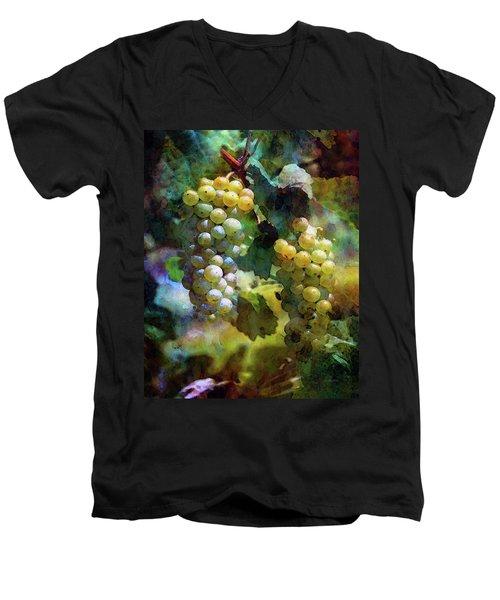 Grape Prism 2739 Idp_2 Men's V-Neck T-Shirt