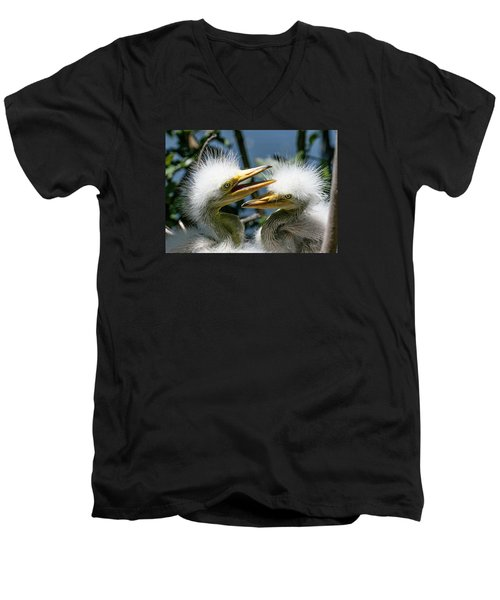 Great Egret Chicks Men's V-Neck T-Shirt by Brian Tarr