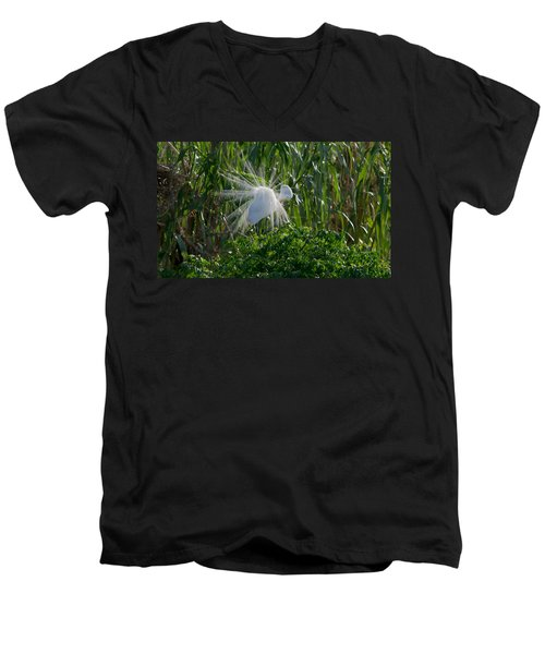 Great Egret In Flight With Windy Plumage Men's V-Neck T-Shirt
