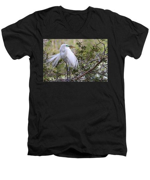 Great White Egret Men's V-Neck T-Shirt