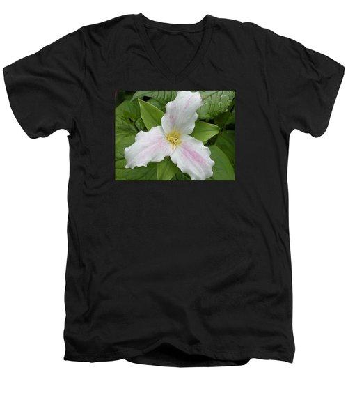 Great White Trillium Men's V-Neck T-Shirt