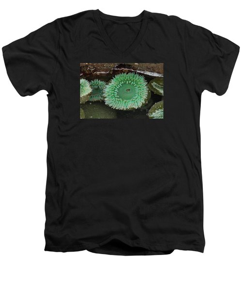 Green Anemone Men's V-Neck T-Shirt