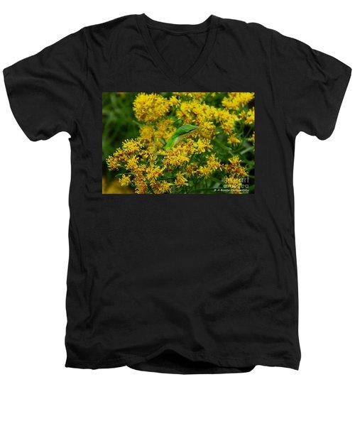 Green Anole Hiding In Golden Rod Men's V-Neck T-Shirt